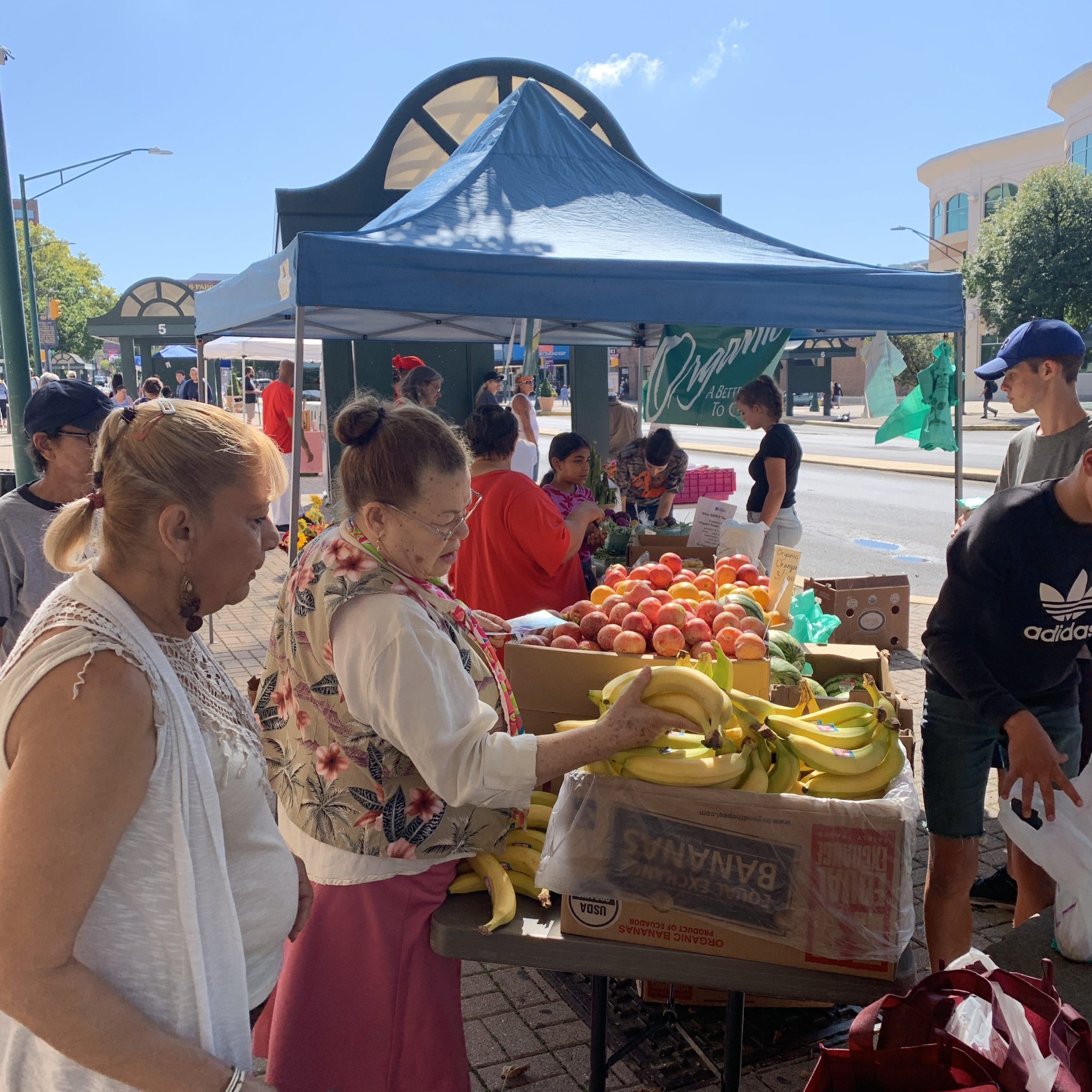 Penn Street Market Shoppers Downtown Reading